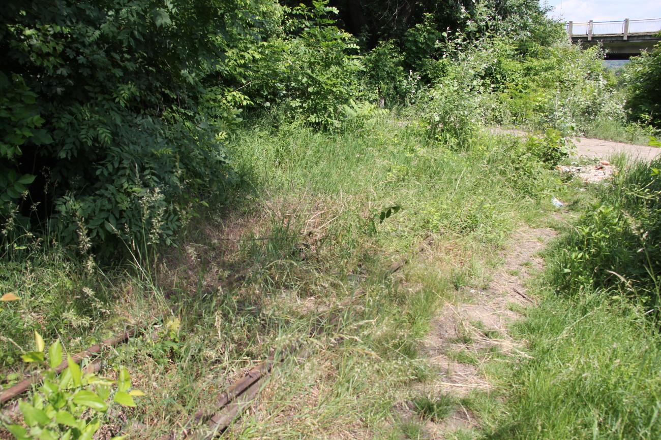 пішли по колії followed by railway track