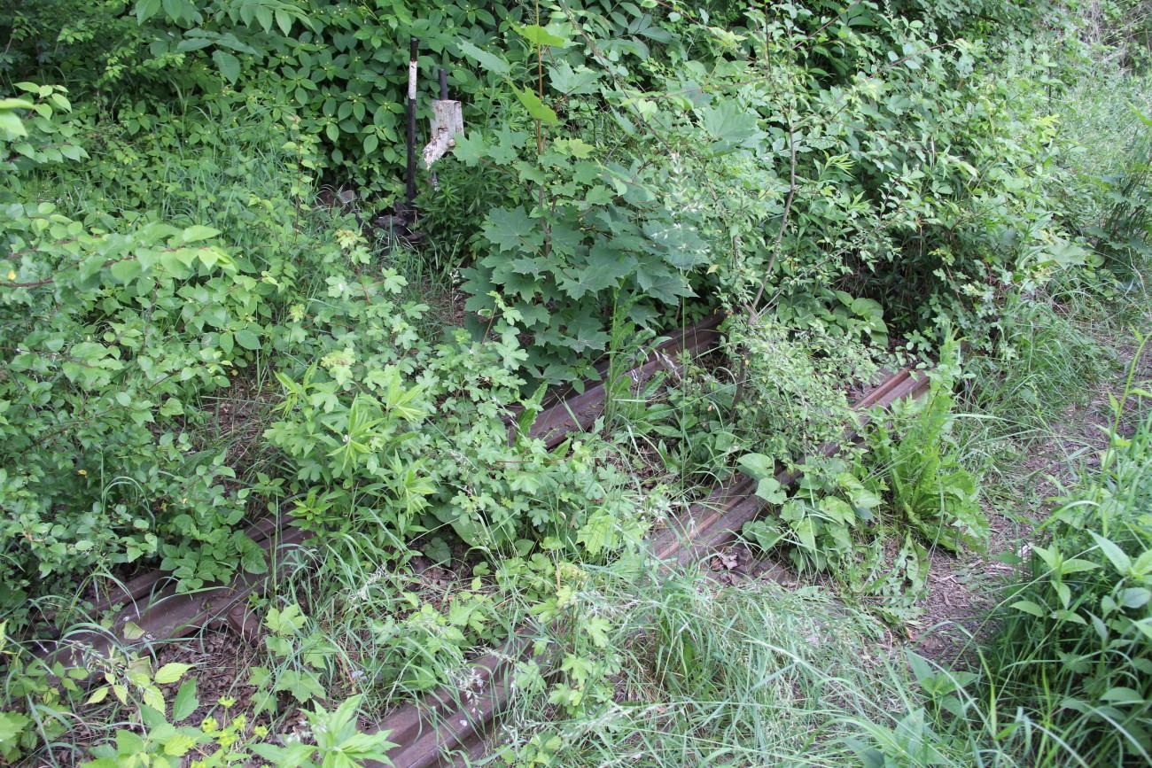 стрілка по дорозі в тупик railway arrow near deadlock